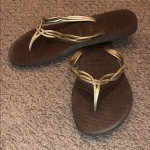 Brown gold trim havaianas
